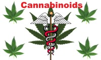 Cannabinoider & det Endocannabinoide System